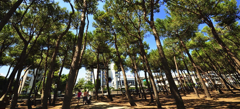 Residence per vacanze ad alba adriatica sul mare for Vacanze a barcellona sul mare